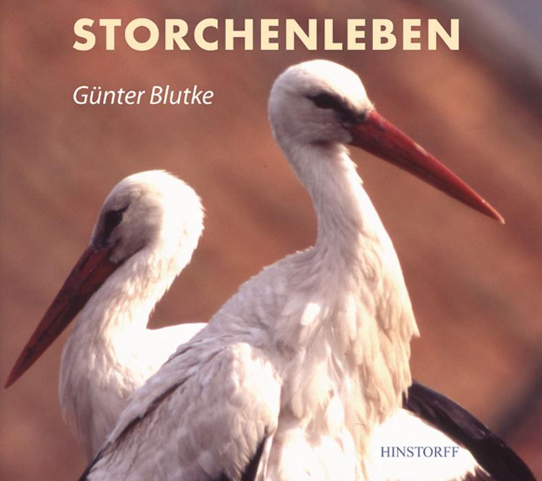 Storchenleben